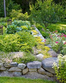 I love the use of herbs for color and texture. Also beautiful creation of space around stone pathways.