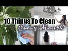 10 Things To Clean Every Month! @endust #ad