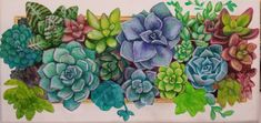 Angela Anderson is creating Acrylic Painting Video Tutorials Cactus Painting, Watercolour Painting, Painting & Drawing, Acrylic Painting Tutorials, Painting Videos, Cool Diy Projects, Craft Projects, School Painting, Paint Party