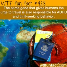 Traveling and thrill-seeking behavior - WOW! Jus WOW! WTF! weird & fun facts #travelfunny #travelfacts