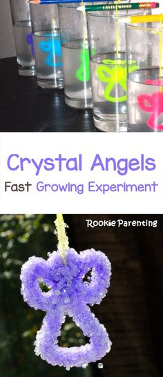 Try this simple experiment to grow crystal angels, learning about solution saturation and crystallization. Easy and fun cience experiment for kids. Preschool Science, Elementary Science, Science Experiments Kids, Science Classroom, Science Fair, Science For Kids, Science Projects, Kindergarten Crafts, Preschool Christmas
