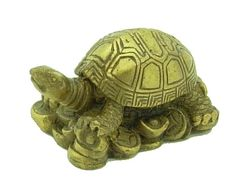 Tortoises are considered a good luck symbol in Feng-Shui decorating. They are also one of the 4 sacred animals (among the Dragon, Unicorn, and Phoenix)