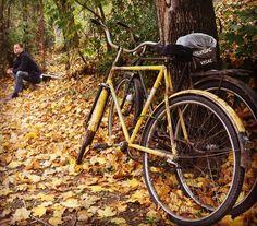 Majka priroda i bog otac #autumn #nature #vrsac