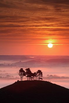 Sunset and trees on a hilltop (photography, photo, picture, image, beautiful, amazing, travel, world, places, nature, landscape)