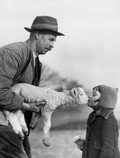 Kiss From A Lamb, Ist January, 1939. A young evacuee from London receives a New Year's kiss from the first lamb of the year, on the Sussex farm where she now stays. Photo by Reg Speller. °