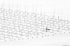 Geometrie di bambù, pescatori e acqua - Il Post