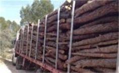 fabricas de pellets en España