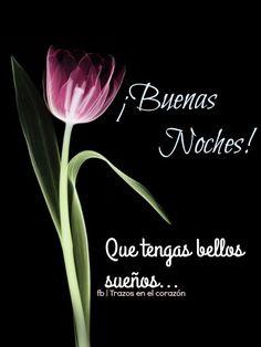 ¡Buenas Noches! Que tengas bellos sueños... @trazosenelcorazon