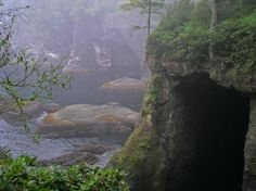 Cape Flattery Trail to Neah Bay. At the furthest tip of northwest Washington AND the United States...  wonderful trial - eagles in the tree tops, whales passing by...