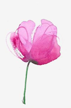 Watercolor flower art print of a pink peony