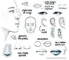 Face study of Park Ji-min (박지민) of BTS (방탄소년단). || By midasauriferous on Tumblr. Side profile view, drawing eyes, nose, lips