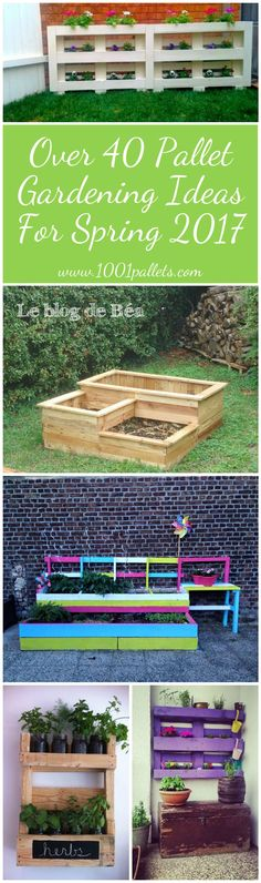 Spring is here, and we've got over 40 terrific ideas for your Pallet Garden! Big or small, 1001pallets.com has Spring Pallet Gardening Ideas for 'em all!