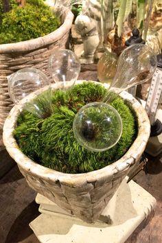 Garden Pot Glass Watering Globe