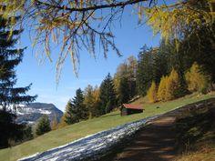 Herbststimmung bei Lantsch/Lenz im Kanton Graubünden