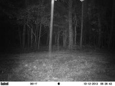 Strange unknown beam from my game cam