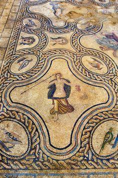 Mosaïque représentant l'histoire de Penthée (fin du IIe-début du IIIe s.) -Fouille de l'avenue Jean Jaurès (2009) à Nîmes, Gard