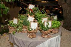 tableau con piantine aromatiche tableau piante aromatiche,cartoncino,carta assemblaggio