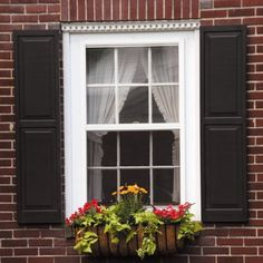 Best representation descriptions: Exterior Window Shutters Home Depot Related searches: Ranch Exterior Shutters for Windows,Rustic Exterior. Outdoor Window Shutters, Interior Window Shutters, House Shutters, Wood Shutters, Exterior Windows, Black Shutters, Exterior Window Molding, Painting Shutters, Interior Doors