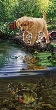 How To Deal With Aggressive Dog Behavior Problems - Dog Health Care and Information Dog Artwork, Aggressive Dog, Lab Puppies, Fish Art, Wildlife Art, Dog Behavior, Animal Paintings, Dog Training, Animal Pictures