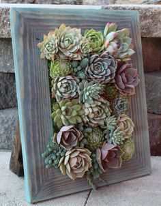 Standing Table Top Vertical planter Succulent garden! Made to order