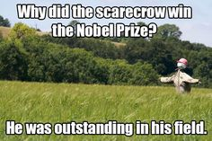 Why did the scarecrow win the Nobel Prize? He was outstanding in his field.