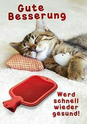 Picture result for a better recovery - Sprüche - Katzen / Cat Cool Cats, Gatos Cool, Kitten Care, Get Well Soon, Woodland Party, Ted Talks, Animals And Pets, Eat Cake, Cats And Kittens