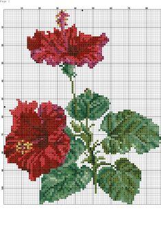 Cat Cross Stitches, Cross Stitch Needles, Cross Stitch Rose, Cross Stitch Flowers, Counted Cross Stitch Patterns, Cross Stitch Charts, Cross Stitch Designs, Cross Stitching, Cross Stitch Embroidery