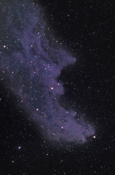 The Witch Head nebula - interstellar dust is reflecting a ghostly light from Rigel (the bright star at the right foot of Orion) - by Steve Fry