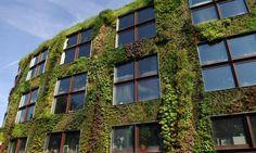 Green dream ... Musée du Quai Branly in Paris, designed by Nouvel. Photograph: Yves Bellier