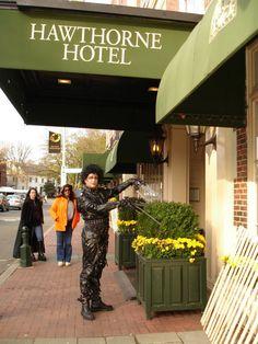"Edward ""scissorhands"" landscaping the Hawthorne Hotel"