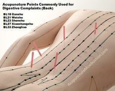 Acupuncture/ Acupressure Points Commonly Used for Digestive Complaints (Back) (BL18 Ganshu, BL21 Weishu, BL23 Shenshu, BL27 Xiaochangshu, BL33 Zhongliao) http://www.acupuncturemoxibustion.com/acupuncture-points/ibs-acupuncture-points/
