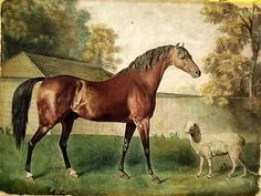 #antique Vintage Painting Print On Canvas Ready to Hang Equine Horse Sheep Stubbs Rare! please retweet