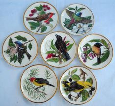 Stoneware - 7x SONGBIRDS OF THE WORLD-FRANKLIN PORCELAIN-DISPLAY PLATES