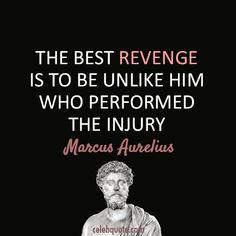 Quotes From the Show Revenge | Marcus Aurelius Quote (About injury, revenge)