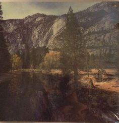 Uomo Red 504 L Pantaloncini Yosemite
