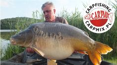 Huge carp over 66 lbs catched on hungarian lake