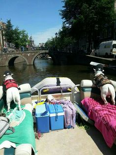 Pirates of the Amsterdam Canals