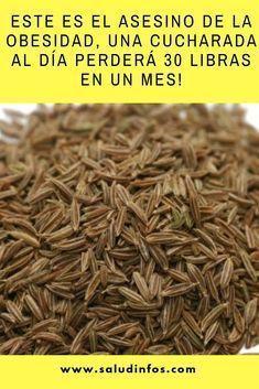 Dietas para bajar de peso recetas chilenas