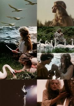 a list of favorite fairytale adaptations:Дикие лебеди/Metsluiged (The Wild Swans), Soviet Union, 1987