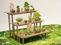 An assortment of Risa Hirai's bonsai cookie art (she also does sukiyaki)
