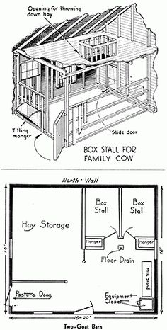 Why to raise dairy cows