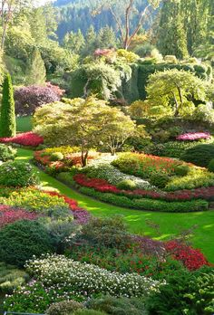 Portrait photo of Butchart Gardens, Vancouver Island Amazing! Portrait photo of Butchart Gardens, Vancouver Island Magic Garden, Dream Garden, Garden Art, Garden Design, Big Garden, Garden Sheds, Garden Planters, Beautiful Flowers, Beautiful Places
