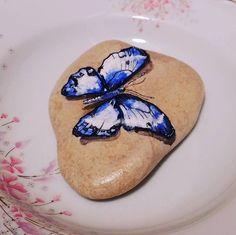 #urla #izmir #istanbul #instagramturkey #stone #stonepaint #butterfly #blue