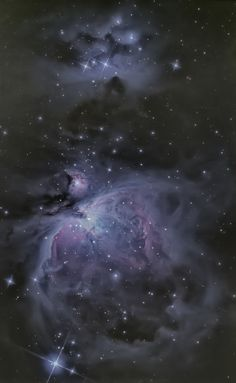 Nice to see the trapezium! The Great Orion Nebula, NGC 1975 & 1977 Taken by Jeff Adkins Sr, Jr & Terry Lutz on December 2013 @ Willard, Ohio Carl Sagan Cosmos, Space Photography, Phone Photography, Orion Nebula, To Infinity And Beyond, Deep Space, Space Exploration, Out Of This World, Beautiful Space