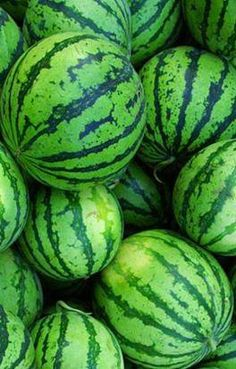 57 Ideas For Fruit Aesthetic Melon World Of Color, Color Of Life, Fruit And Veg, Fresh Fruit, Fruit Juice, Juice Diet, Go Green, Green Colors, Green Watermelon