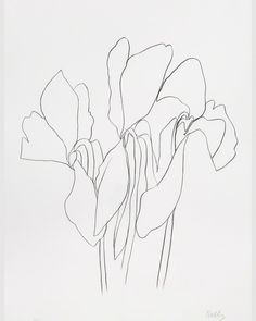 From our Spring 2017 Mood Board. #Cyclamen inspiration by Ellsworth Kelly