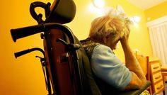 New Study Reveals Major Risk Factors of Alzheimer's Disease