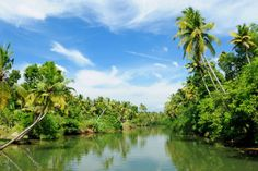 Photo about Coco trees reflection at back waters of Kerala, India. Image of lake, india, green - 12801731 Top 10 Honeymoon Destinations, Kerala Tourism, Kerala India, India Tour, Picture Postcards, Tourist Places, Tropical Paradise, Weekend Getaways, Scenery