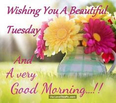 Wishing You A Beautiful Tuesday And A Very Good Morning
