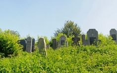 Cemetery in Golubac | Film in Serbia